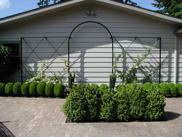 Trellises and Arbors